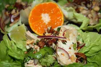 Thai chicken salad recipe that is mild and full of flavors